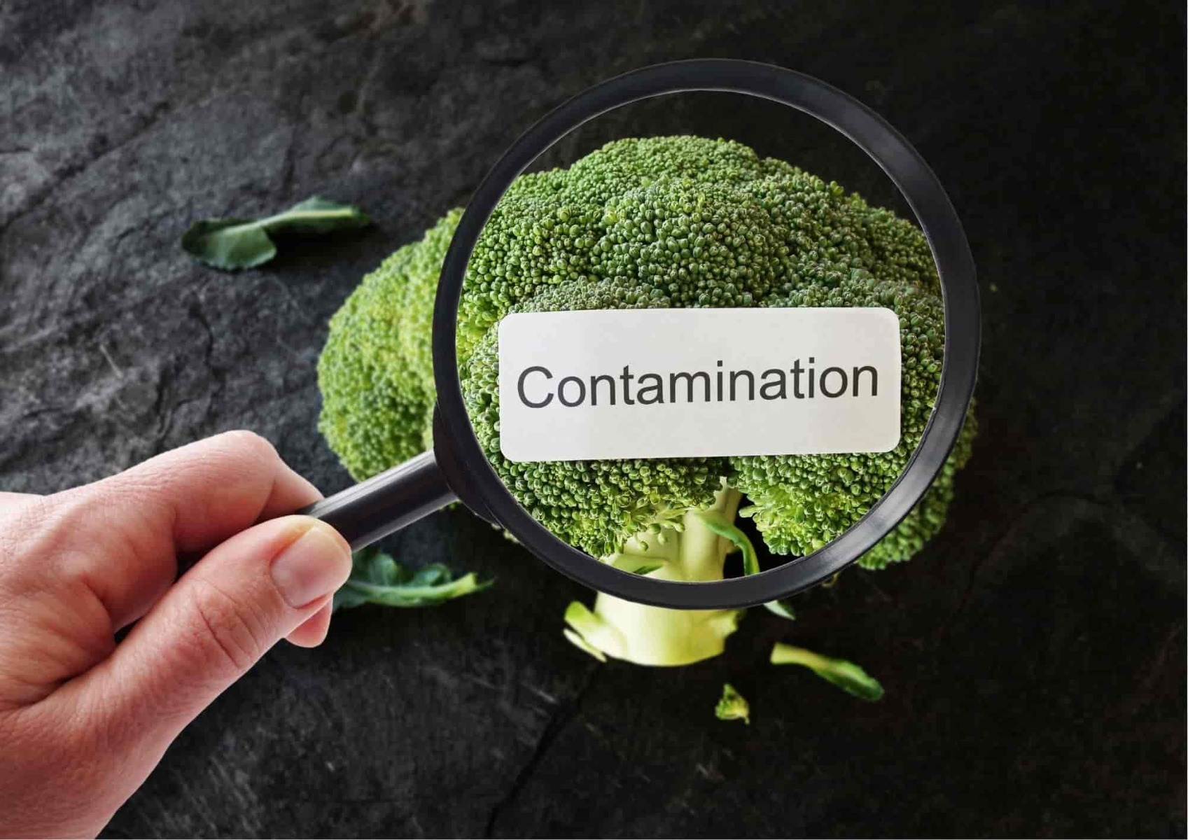 Food contamination and coronavirus_bettercaremarket