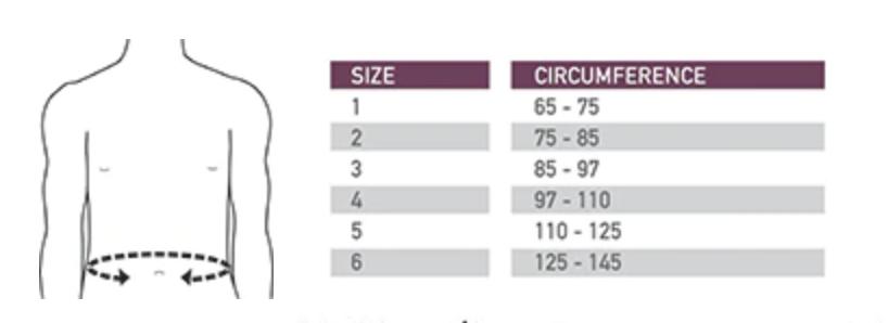 Back brace sizes